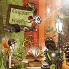 Kit « Esprit de la forêt »