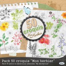 Pack « 50 croquis Mon herbier  »
