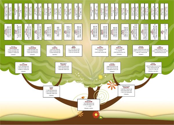 Mod le d 39 arbre gratuit pour g n atique cdip boutique - Arbre genealogique avec photo ...