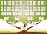 Modèle d'arbre gratuit pour Généatique