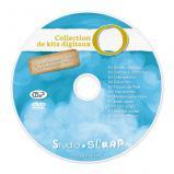DVD de sauvegarde O pour les kits digitaux