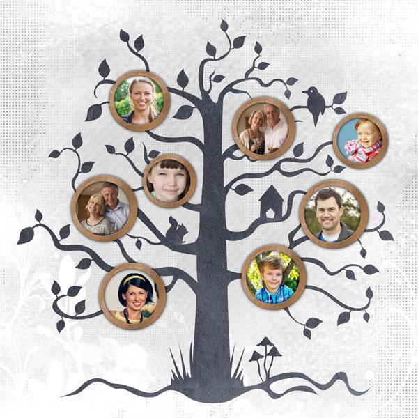 Pack 50 arbres portraits de famille logiciel de montage photo cdip boutique logiciel de - Idee arbre genealogique original ...