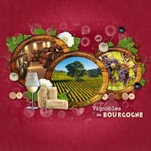 01-cdip-vignobles-de-Bourgogne
