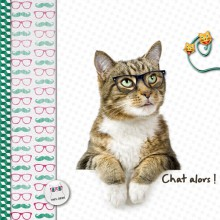 02-cdip-chat-alors