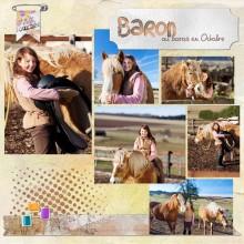 03-cdip-album-baron