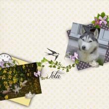 03-iola-un-amour-de-chien