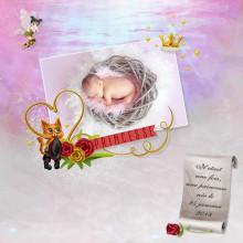 04-cdip-naissance-d-une-princesse
