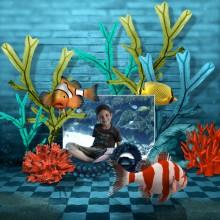 04-julielleclic-aquarium