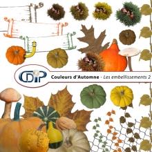 Kit « Couleurs d'automne » - 03 - Les embellissements 2