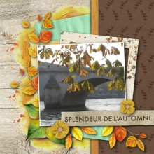 08-yann-paris-automne