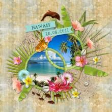 09-cdip-hawaii-2011