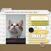 10-Kit-photo-project-memories-v4-web