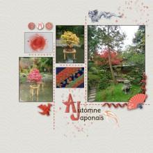 10-larel-automne-japonais