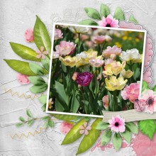 10-yann-fleurs-tulipes