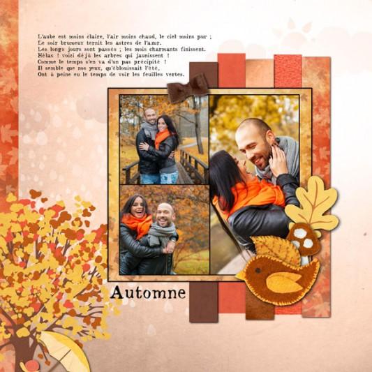 11-cdip-automne-web