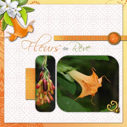 13-cdip-fleurs-de-reve-v4-print