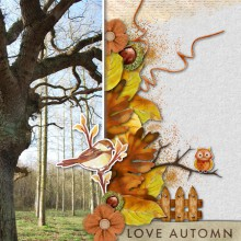 13-yann-love-automn