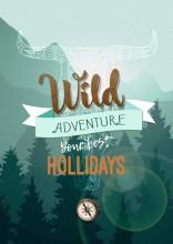 14-cdip-affiche-wild-holliday