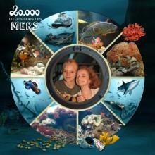 14-jdauchy-plongee-au-fond-de-l-ocean