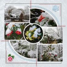 15-jdauchy-duel-hiver-printemps-web