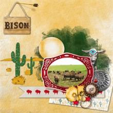 18-moyson-les-bisons