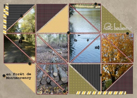 19-Kit-Photo-project-foret-montmorency-v4-web