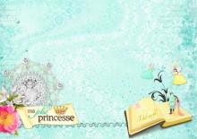 22-bribri62-carte-pour-une-princesse