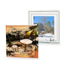 27-Nature-saisons-140x140-web