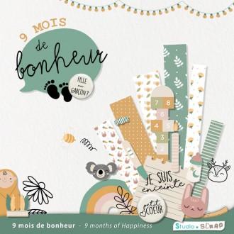 Kit « Neuf mois de bonheur » en téléchargement