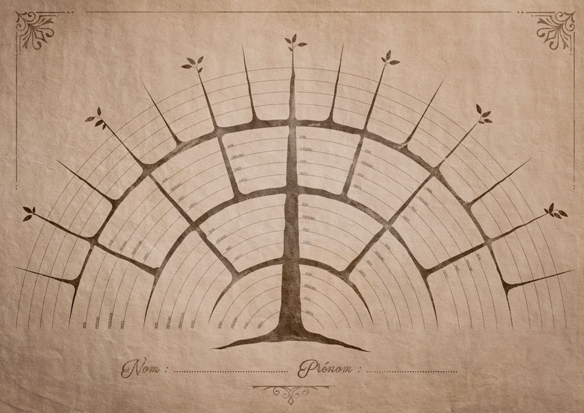 Arbre-géometrie-A3
