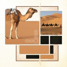 Pack-azza-orient-express-45-web