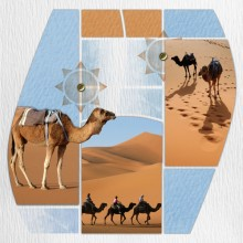 Pack-azza-voyage-tropical-08