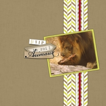 album-zimbabwe-23