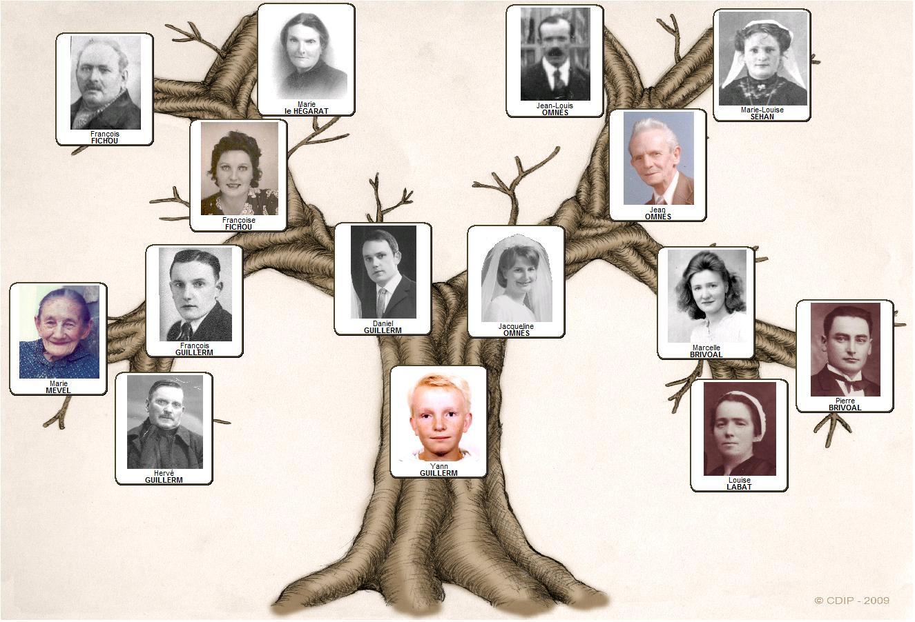 Pack de mod les d 39 arbres pour g n atique compl ments - Arbre genealogique avec photo ...