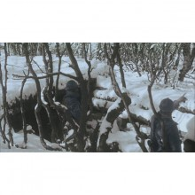 dvd-apocalyse-06-web