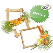 Kit « Cocktail fruité » - 08 - Les clusters