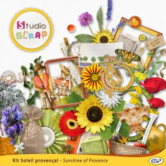 kit-soleil-provencal-embellissement-1-web
