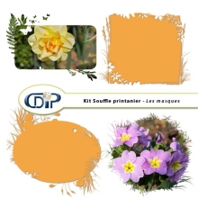 Kit « Souffle printanier » - 09 - Masques
