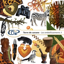 Kit « Terre de savane » - 04 - Les embellissements 3