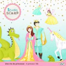 kit-une-vie-de-princesse-presentation-embellissements-02