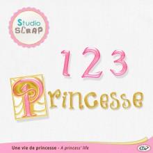 kit-une-vie-de-princesse-presentation-lettrines
