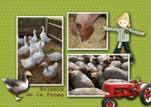 kit week end champetre animaux de la ferme v4 web