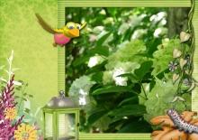 Kit « Les rêves de Prune au jardin magique » - 15 - Composition