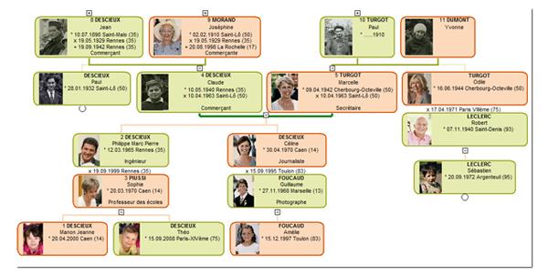 Arbre généalogique mixte avec la belle famille