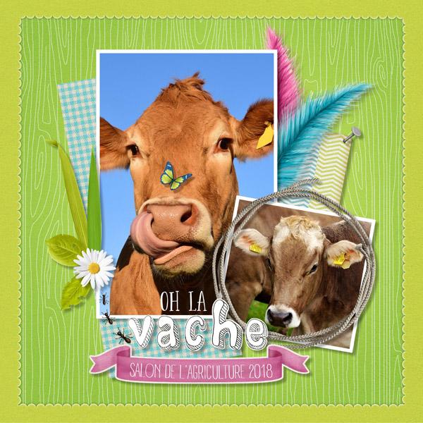 Carte gratuite oh la vache cdip boutique logiciel de - Salon de l agriculture place gratuite ...