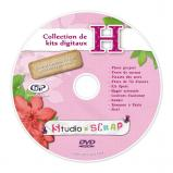 DVD de sauvegarde H pour les kits digitaux