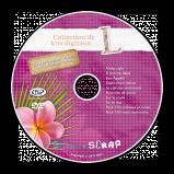 DVD de sauvegarde L pour les kits digitaux