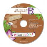 """DVD-Rom """"Digital kits - Set B"""""""