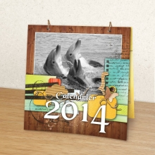 02 Complement calendrier 2014 30x30 calendrier double web