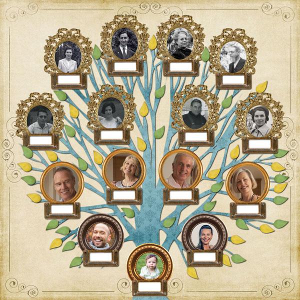 Pack 50 arbres portraits de famille logiciel de - Idee arbre genealogique original ...